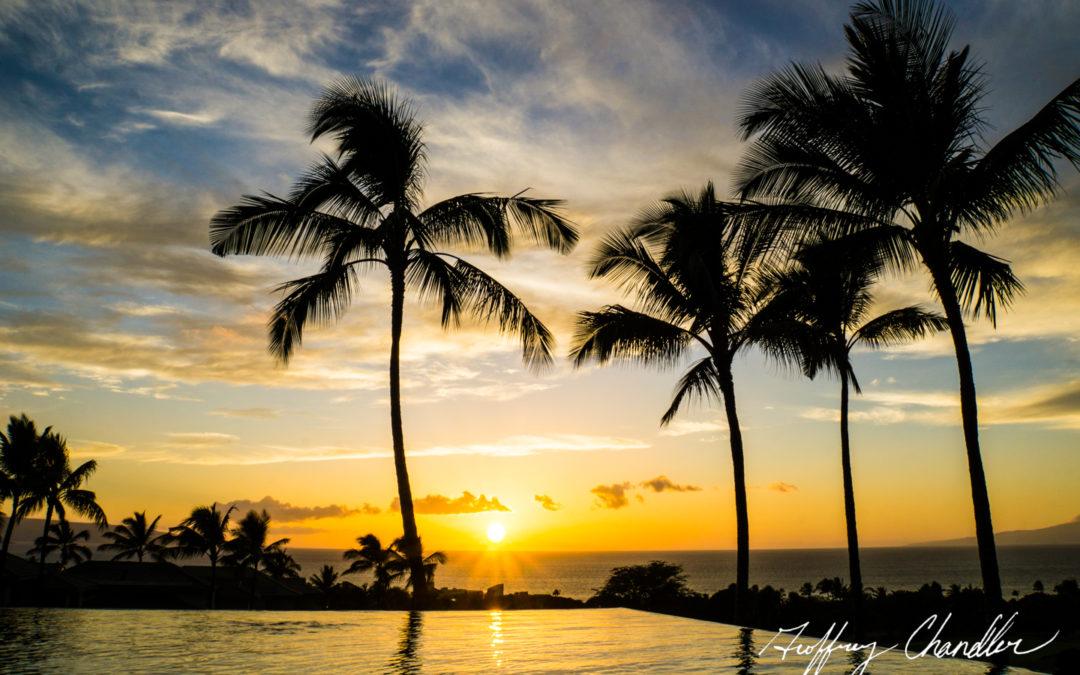 Mucho Aloha: A Hawaiian Love Story